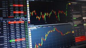 Long-term growth stock portfolio
